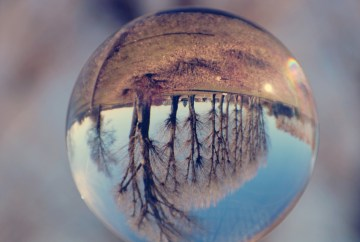 Image of glass ball with trees upside down to show life on its head from coronavirus