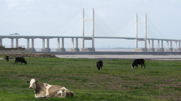 At over 3 miles long, the Second Severn Crossing dwarfs its older neighbour