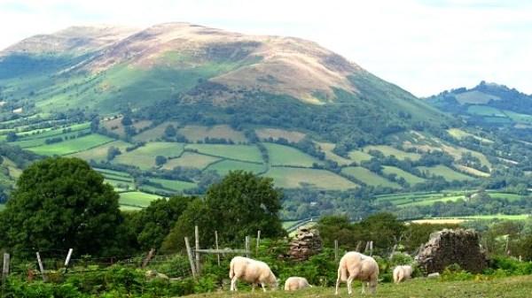 Mynydd Troed from above Cwmdu