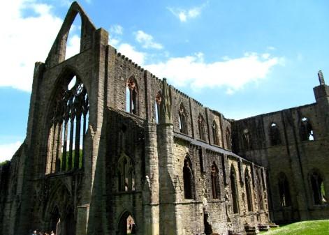 Tintern Abbey, Cistercian Way