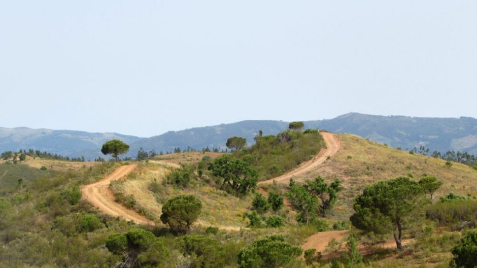 The route to the mountains was somewhat undulating