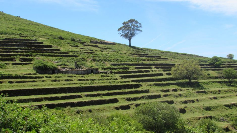 The abandoned terraces were once used for agriculture