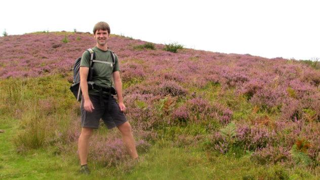 Purple heather, Brecon Beacons National Park, Harri Garrod Roberts