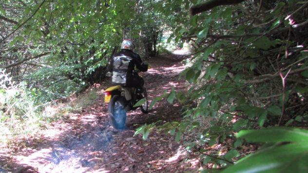 Illegal motorcycling on footpath, motorcyclist, Coed Mawr, Rhiwderin, Mynydd Machen, Caerphilly