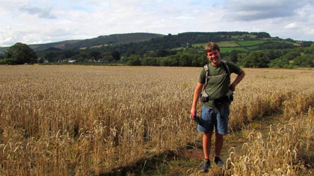 Wheat field, Rhymney Valley, near Plas Machen