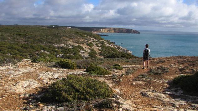 Coastal scenery, Parque Natural do Sudoeste Alentejano e Costa Vicentina, Algarve, Portugal