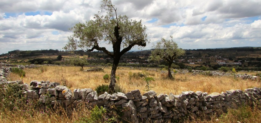 Silver Coast: walking in the Serra dos Candeeiros