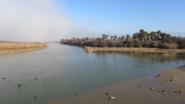 Fog over Lagoa dos Salgados. Algarve