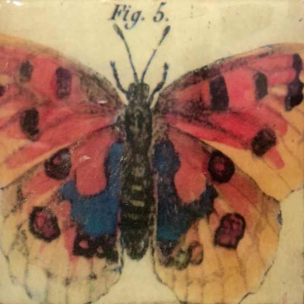 Butterfly Tracy Casagrande Clancy Encaustic Mixed Media