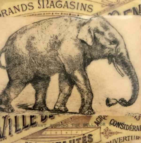 Elephant Tracy Casagrande Clancy Encaustic Mixed Media