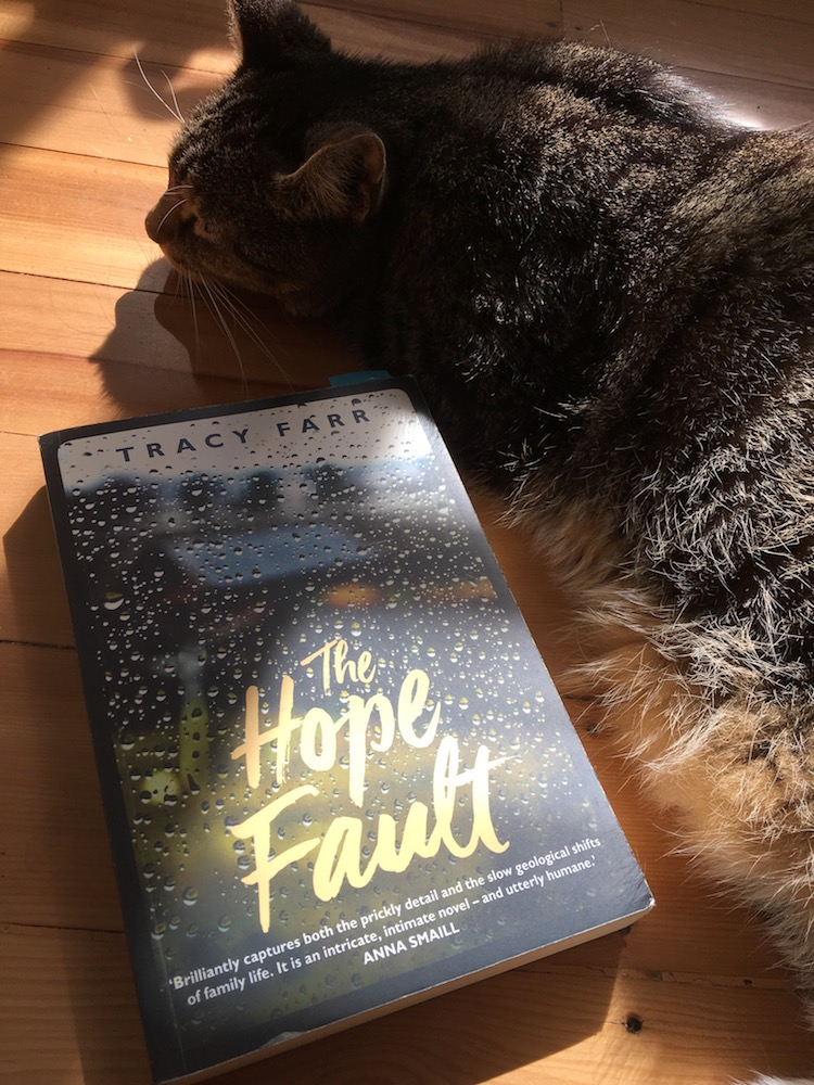 The Hope Fault on the floor with cat