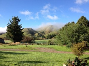 View from the back porch, fog on the hill.