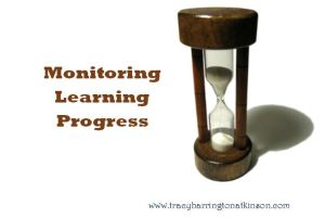 Monitoring Learning Progress