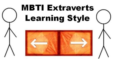 MBTI Extraverts Learning Style