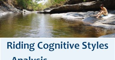 Riding Cognitive Styles Analysis