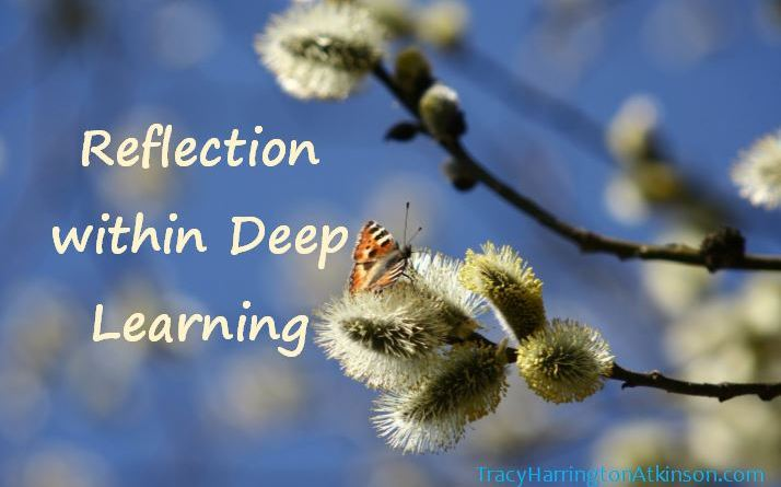 Reflection within Deep Learning