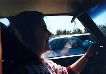 driving-in-denmark