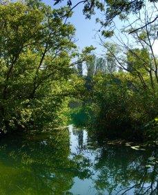 waterfalls-walk-was-beautfiul