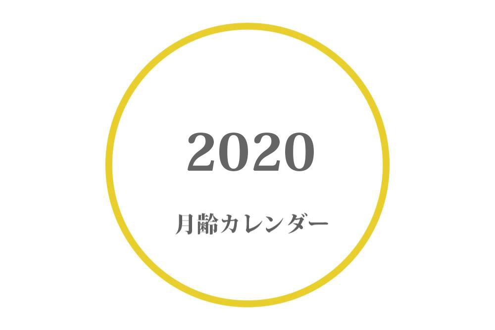2020年 月齢カレンダー|満月・大潮・月の満ち欠け(上弦・下弦の月)
