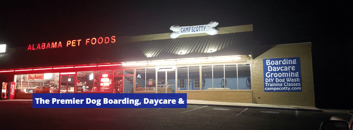 Camp Scotty The Premier Dog Boarding, Daycare and Grooming Birmingham Alabama