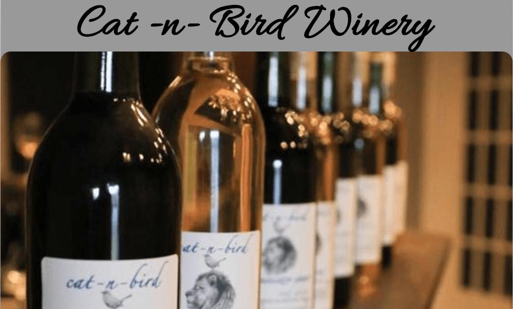 Cat n Bird Winery Chelsea Alabama TradeX Partner