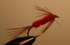 Carey special wet fly