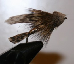 Muddler minnow is a great all around fly for every fly fishers fly box
