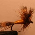 grizzly wulff dry fly