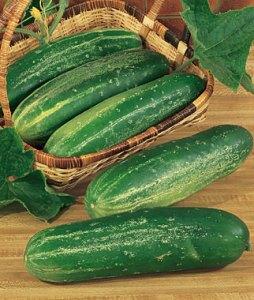 burpee_straight_eight_Cucumber