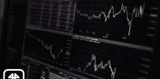 trading11 typy grafov graf analyza