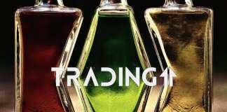 analyza trading11 formacia