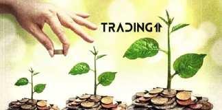 trading11 analyza update