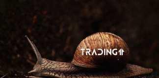 trading11 analyza BTC bitcoinshorty