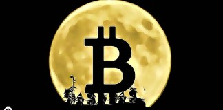 Predikce - Bitcoin v roce 2020 roste - Kdy přijde první velká korekce?