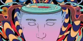 Houbičky či extáze u psychologa? Tyto drogy se začínají používat v psychoterapii