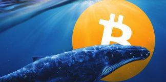 Toto by měl o Bitcoinu vědět každý! Nejdůležitější zprávy posledního týdne