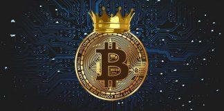 """CEO burzy eToro - """"Bitcoin je králem kryptoměn a zůstane zde navždy!"""""""