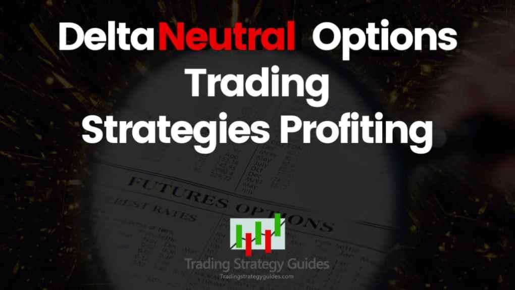 vanguard market neutral investor shares