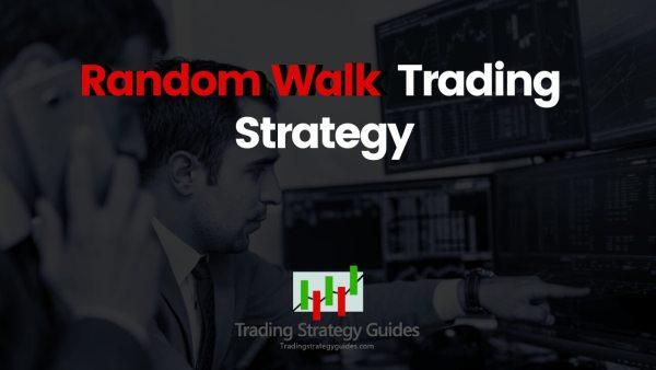 what is random walk theory