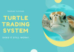 Turtle Trading System