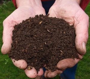 Human Compost