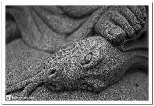 crushserpent