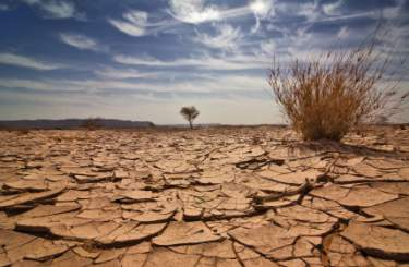 dehydration-parched-soil