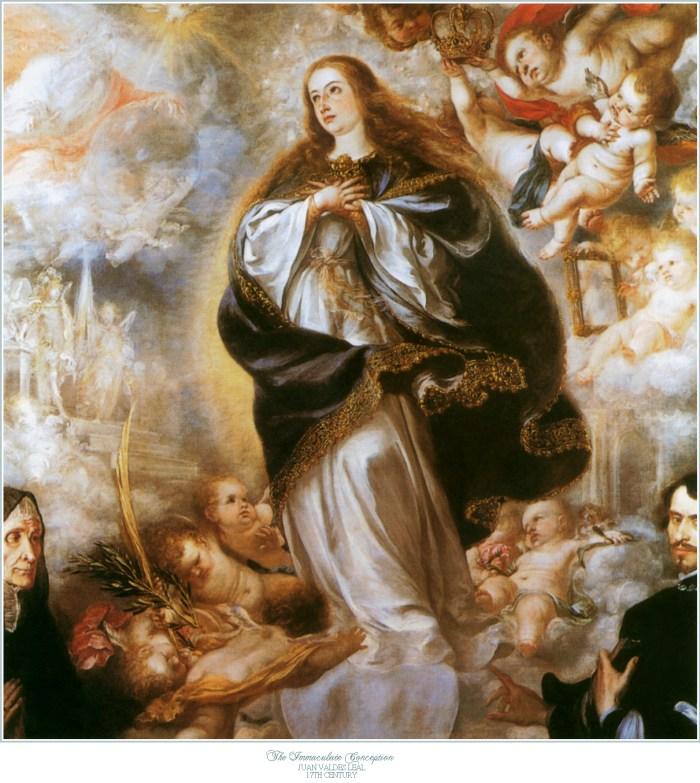 6 immaculata