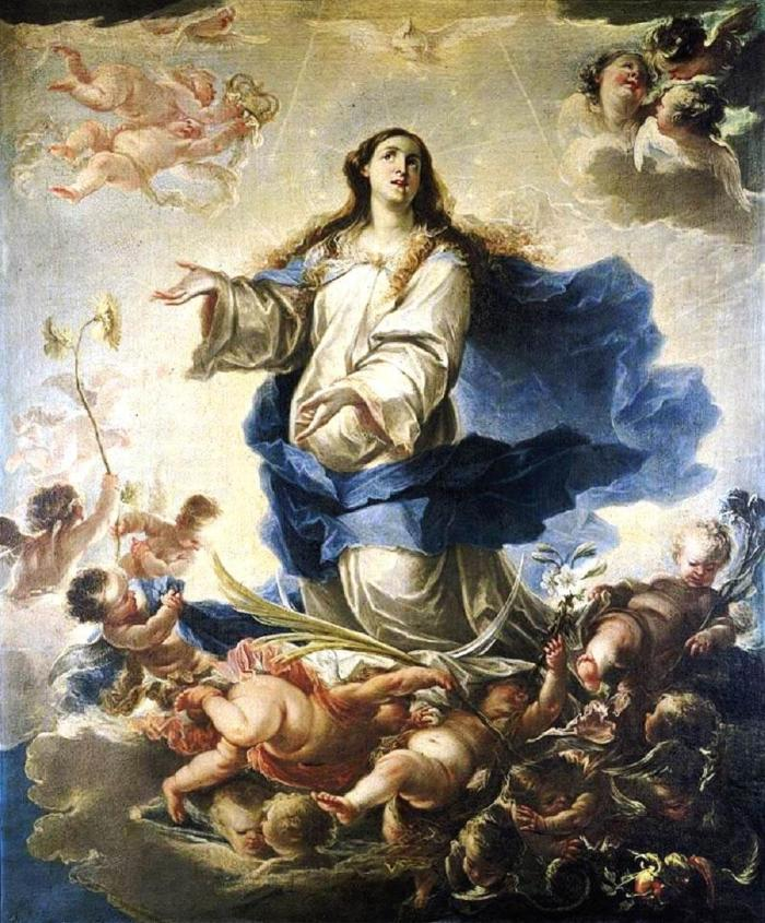 7 immaculata