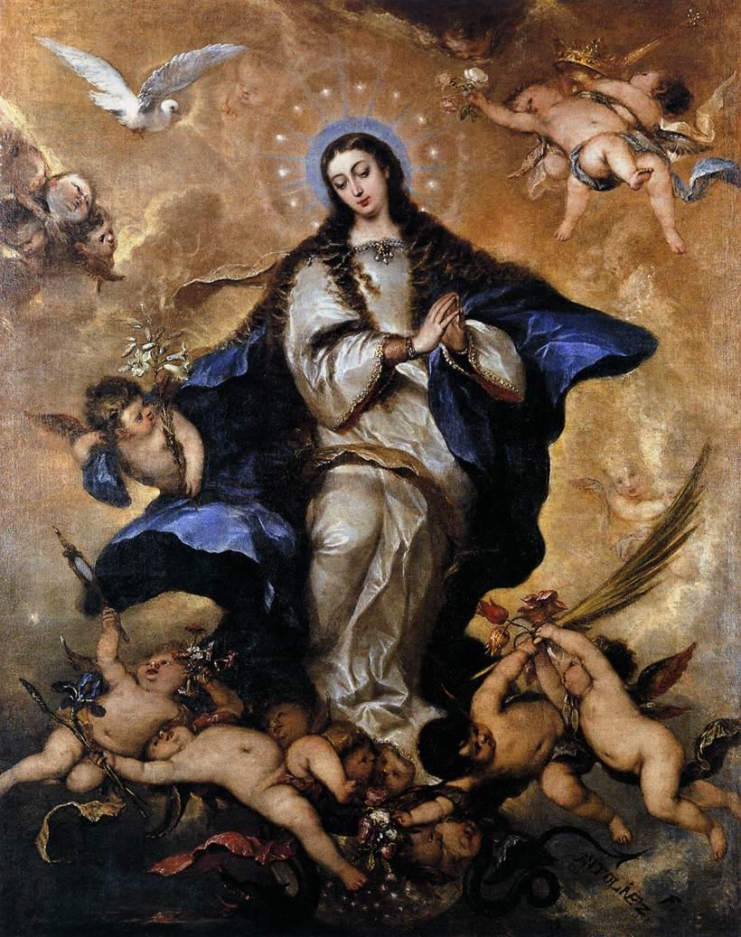 5 immaculata