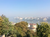View of the Danube River and the Parliament Building in the background (10-31-14)