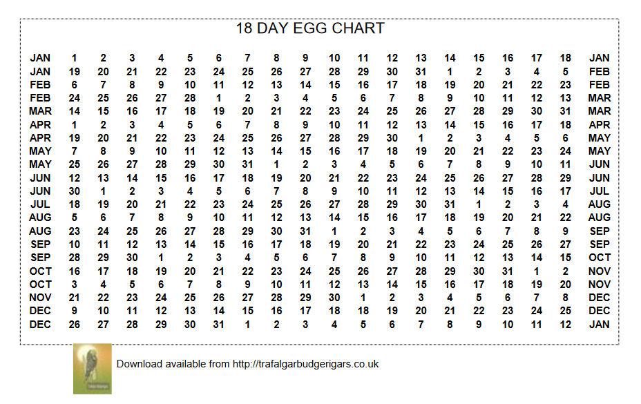 18 Day Egg Chart made available by Trafalgar Budgerigars