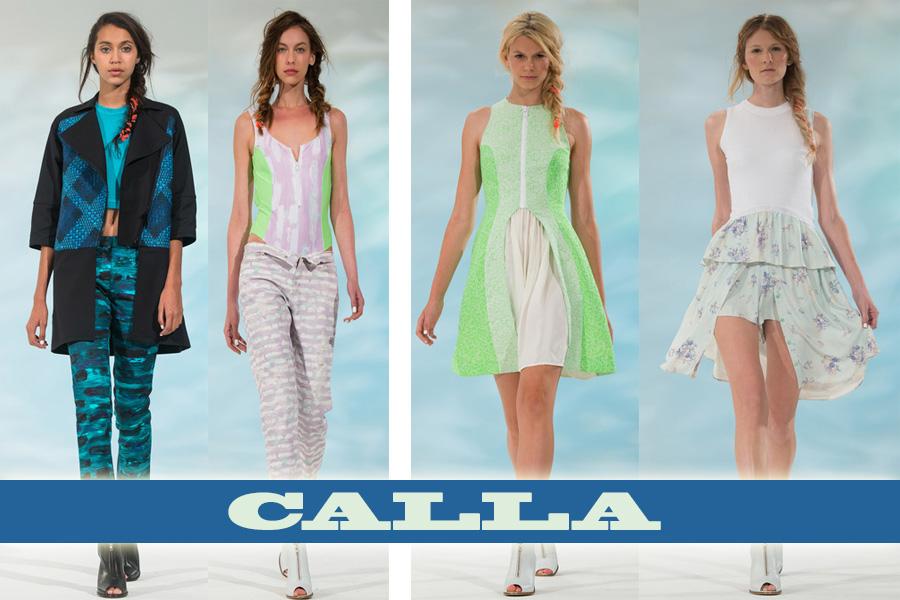 callass14-1