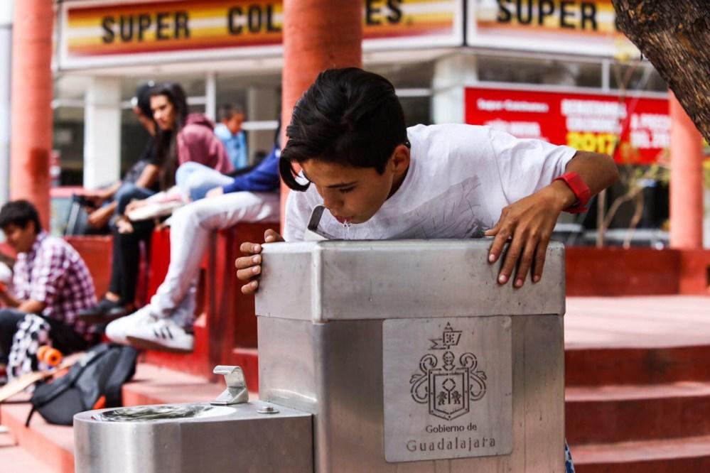 En México inauguraron bebederos para perros